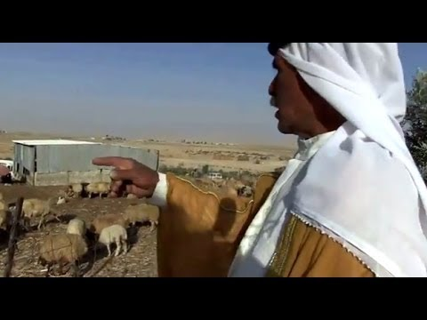 Two Bedouin Sheikhs and the Begin Plan