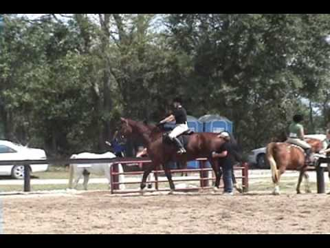 Horseshow ( Girl riding horse :-P ) Video