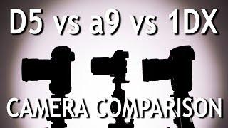 Camera Comparison: D5 vs a9 vs 1DX