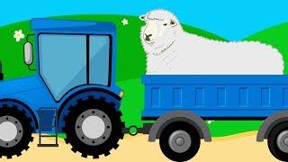 Все про овечек для детей - развивающий мультик про домашних животных - Amaze Kids