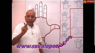 PALMISTRY PART   97 IN HINDI