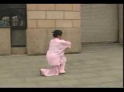 chen style tai chi chaun 36 forms