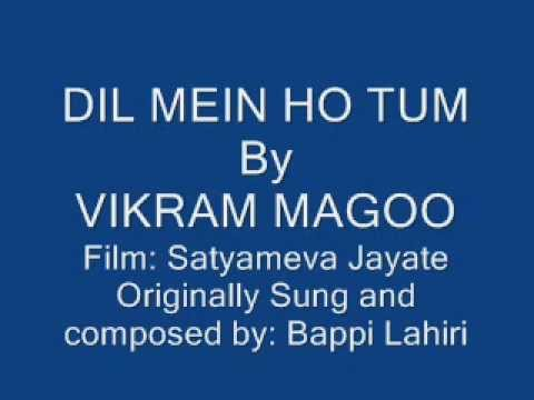 Dil mein ho tum sung by Vikram Magoo