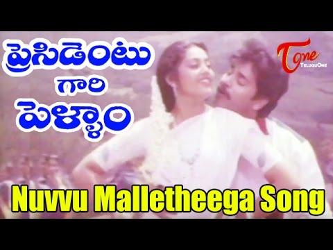 President Gari Pellam Songs | Nuvvu Malleteega | Nagarjuna | Meena