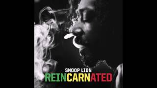 Watch Snoop Lion Remedy video