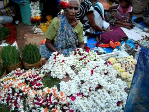 Colorful Flower Market in Mumbai – Rose Lily Mogra and Mari Gold Flowers On Dussehra Day