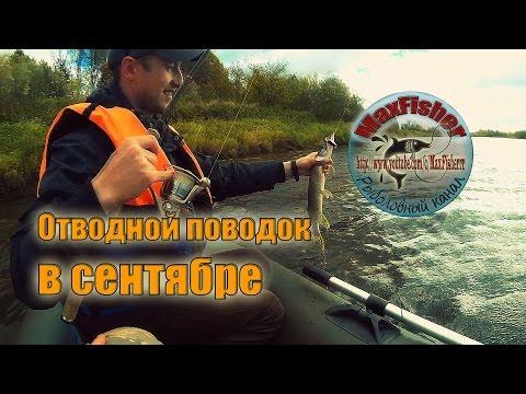 рыбалка по отводному