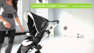 Asalvo Condor | Mundobebes.net
