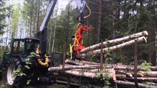 Naarva E24 energy wood head loading trees - E24-energiakouralla kuormaus