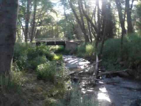 Santa ana river trout fishing youtube for Santa ana river lakes fishing
