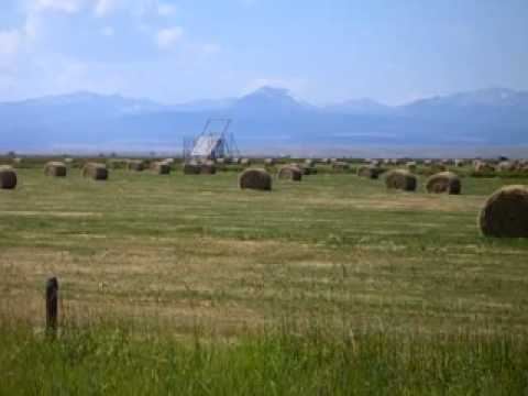 Looking at hundreds of hay rolls south of Wisdom, MT Aug 26