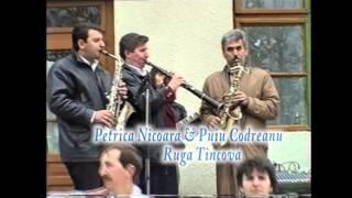 Puiu Codreanu - Petrica Nicoara - Ruga Tincova - Video 3/5