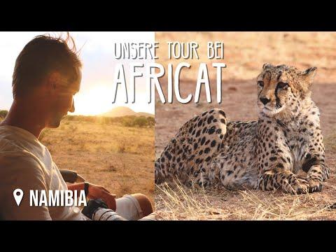 Geparden & Leoparden bei AfriCat Foundation • Namibia • Weltreise Vlog #153