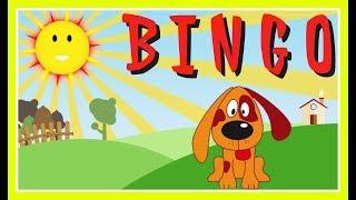 Bingo Children's Song | learn about dogs |  Bingo rhyme for children