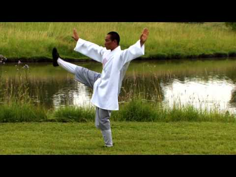 Tai Chi Chuan By A Shaolin Monk In Nature - Zenitude Experience video