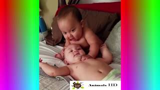 Most Funny Babies -Try Not To Laugh - Babies Compilation 2018 HD