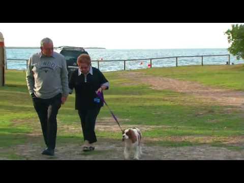 Cowes Caravan Park Phillip Island Thumbnail