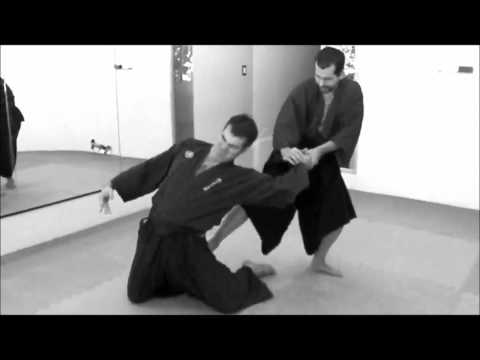 Ogawa Ryu Aikijujutsu - Venezuela training moments Image 1
