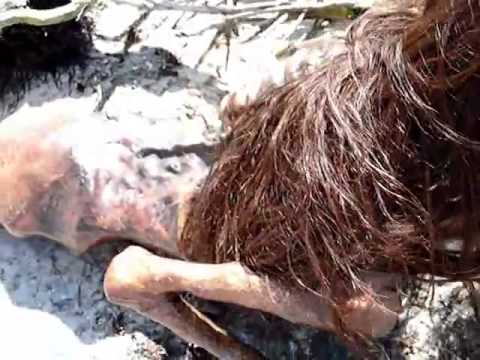 Dead Mermaid Found in Florida