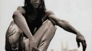 Watch Iggy Pop Private Hell video