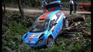 The best of Rally 2018 | CRASHES & MAX ATTACK [HD]