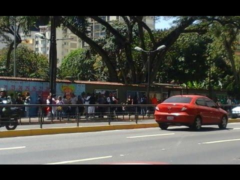 Cola para comprar pescado en La Estancia, Caracas