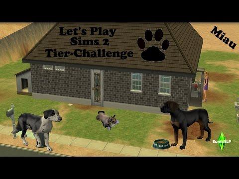 Let's Play Sims 2 Tier-Challenge Part 33 - Neue Welpen und Beförderung [HD/Deutsch}
