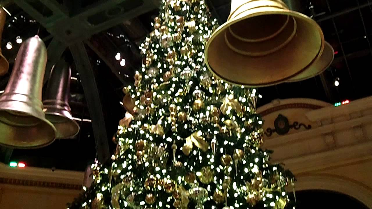 Shasta Fir Christmas Tree