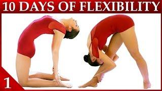 download lagu 10 Day Flexibility Challenge Day 1 – Basic Stretches gratis