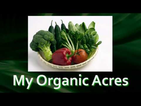 Jerry Hall - My Organic Acres - Online Video Calling Card