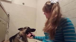 Download SEX WITH DOG WHITE GIRL?!?WTF.. PT.1  ...(((PLEASE SUBSCRIBE))) I'M GOING IN ON THIS FAMILY 3Gp Mp4