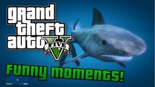 GTA V: Funny Moments! Shark Attack, Funny Faceplant Glitch, Chicken Fails (GTA 5 Gameplay)