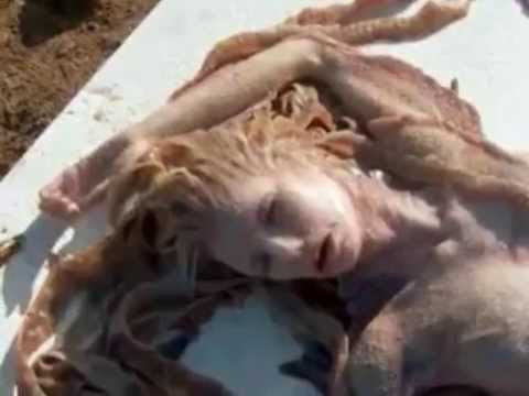 Real Mermaids offshore Arabian Sea , A must watch..never seen before