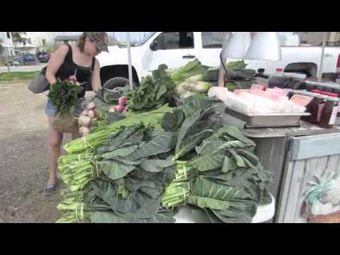 Farmers Market Haul - Easy Work Out - Weight Loss Vlog #48 Ride2health