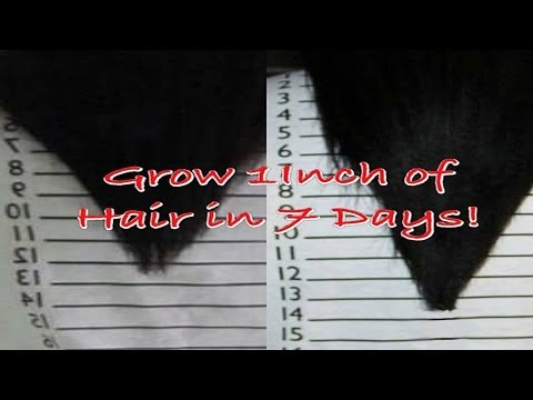 The Inversion Method   Grow 1-2 Inches of Hair in 7 Days!