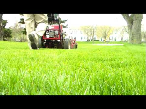 Brothers Lawn Care Services vlog 2