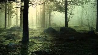 Watch Burton Cummings Timeless Love video