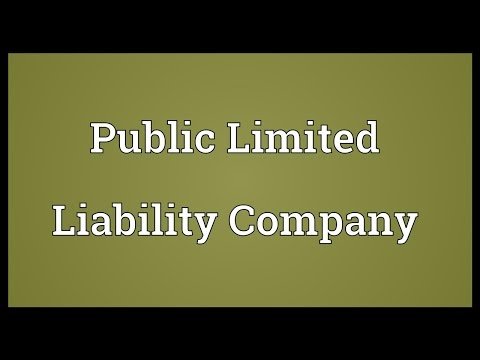 Public Limited Liability Company Meaning