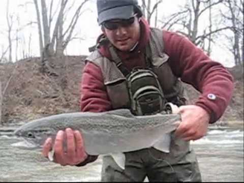 Steelhead Fishing the Sandy Creek- Pulaski NY