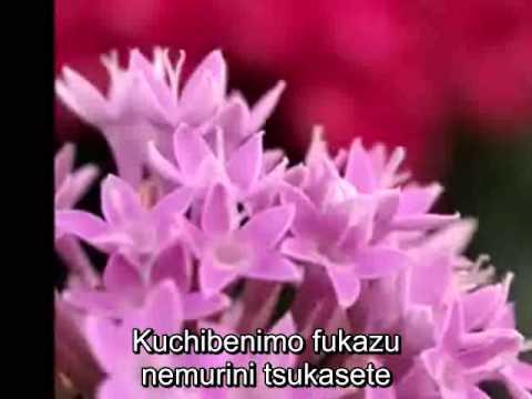 Takao Horiuchi - いつまでもラブソング