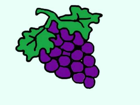 Drawing Tutorial:   How to draw grapes