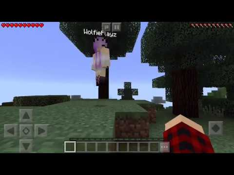 How to play multiplayer Minecraft pe | Aimie Neish