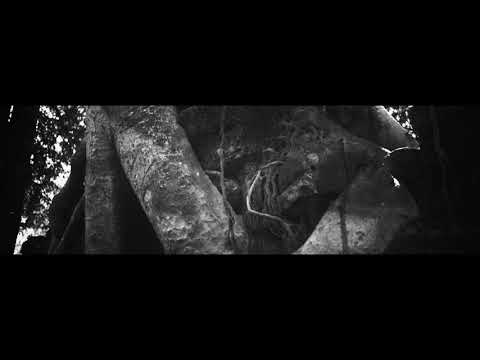 """BARISHI - """"The Longhunter"""" (Official Music Video) 2020"""