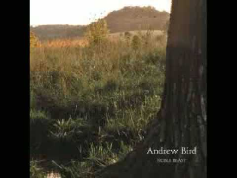 Andrew Bird - The Privateers