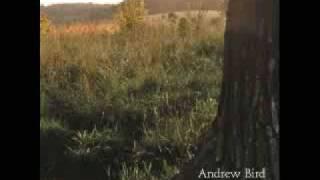 Watch Andrew Bird The Privateers video