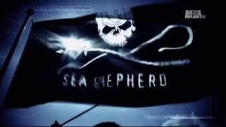 Animal Planet – Whale Wars (Theme Song)
