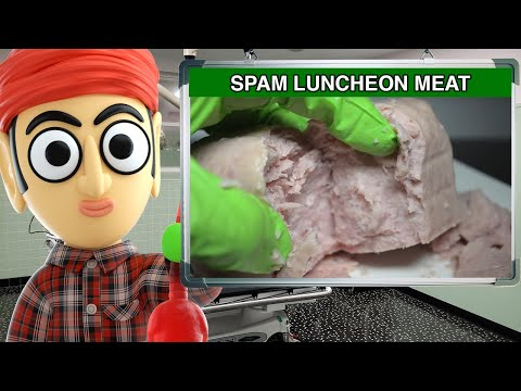 Spam Hormel Foods Luncheon Meat - Runforthecube Food Review