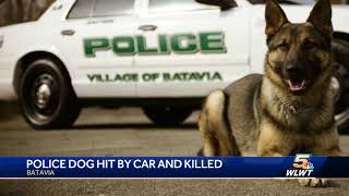 Officers will honor legacy of K-9 killed in car accident