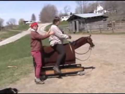 Rocky the Equicizer helps riders at the EAST HILL FARM adult DRESSAGE camp ...