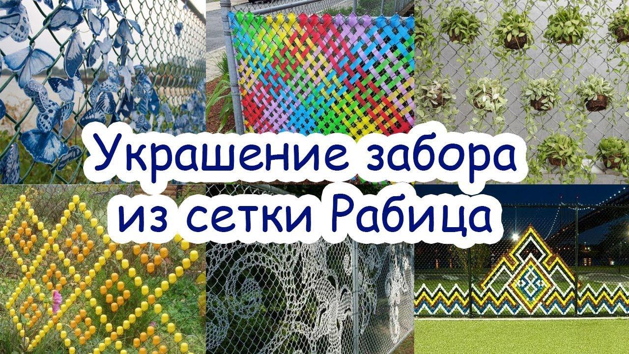 Как украсить забор из сетки рабицы на даче своими руками 89